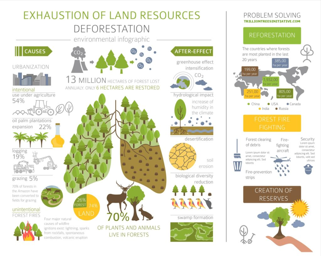 Stop biodiversity loss, deforestation and land degradation.